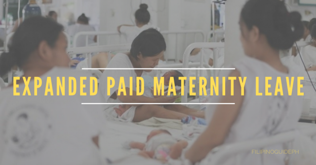 Expanded Paid Maternity Leave