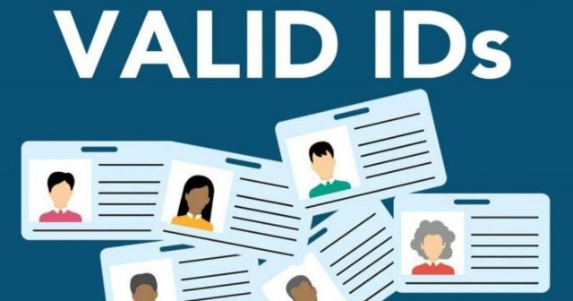 Government-Issued IDs